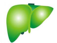肝癌腹水 中药方有哪些